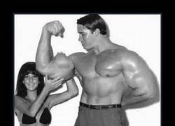 Enlace a El jovencito Arnold Schwarzenegger