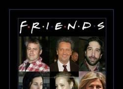 Enlace a ELENCO DE FRIENDS