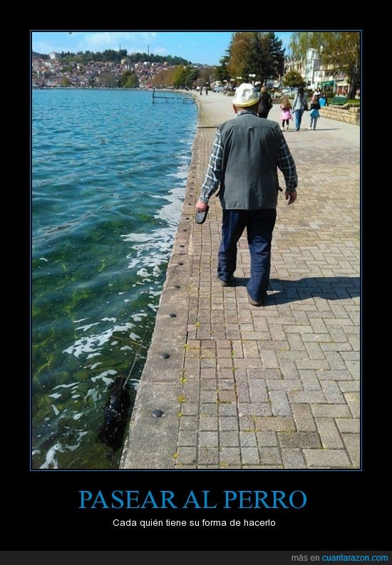 animales.,el perro tenia calor?,nadar,paseo,perro,refrescar,rio,señor,viejo