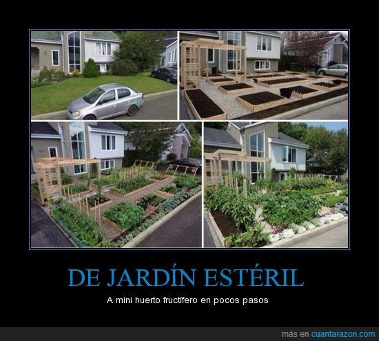 casa,comida,ecología,huerto,jardín,planta
