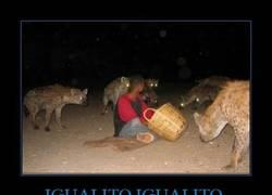 Enlace a Nada, aquí con mis coleguis las hienas
