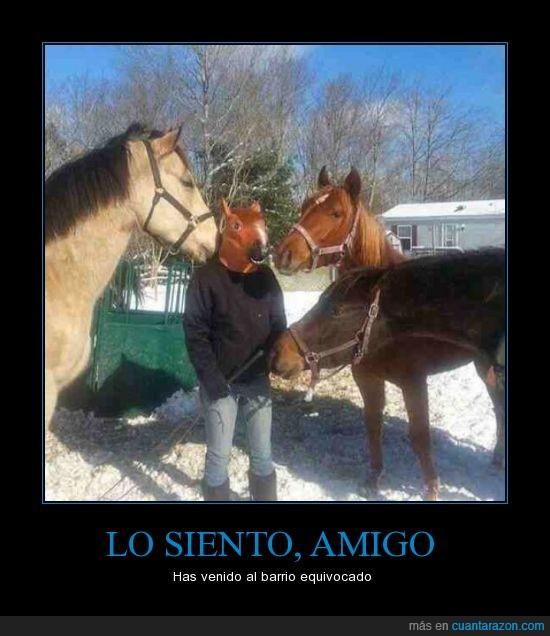 caballo,careta,mascara,you came to the wrong neighborhood