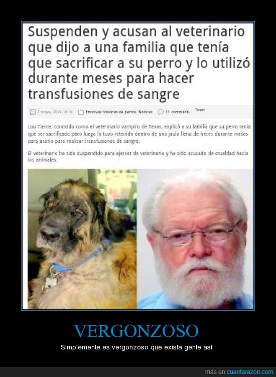asesino,carcel,dueños,maltratador,mentir,perro,psicópata,transfusiones,vergonzoso