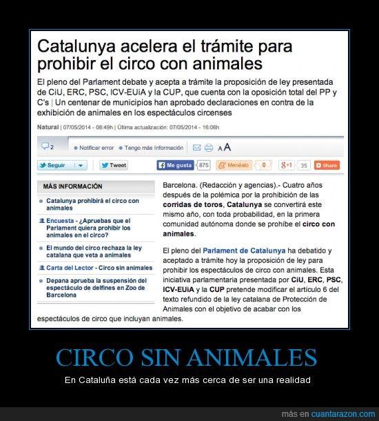 animales,cataluña,catalunya,circo,ley,parlament,prohibir,toros
