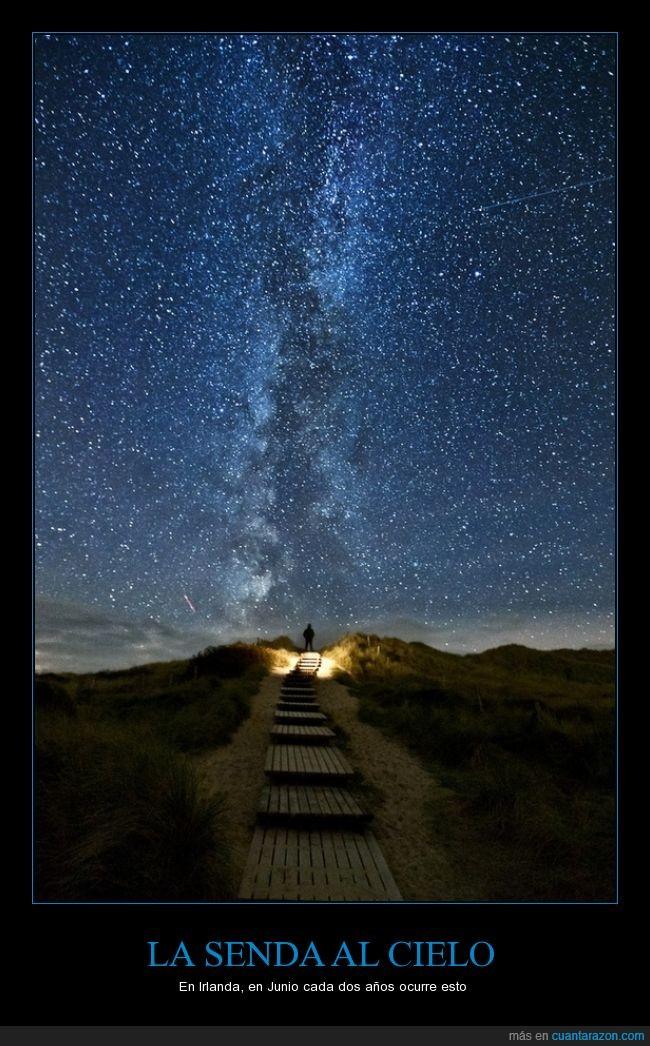 camino,escalera,estrella,junio,linea,madera,senda