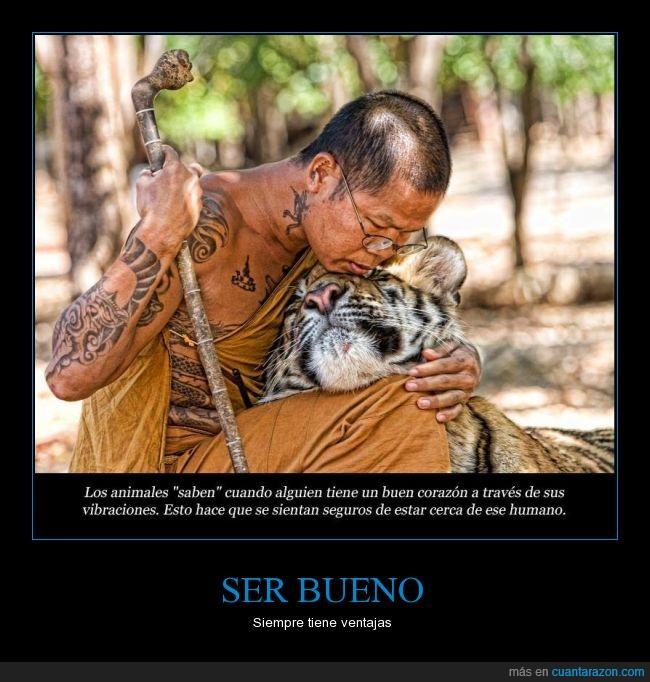 alma,animal,bondad,corazon,notar,persona