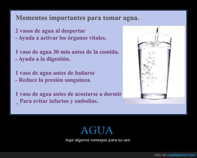 activar,agua,beber,cuerpo,despertar,dormir,sano