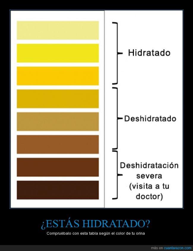amarillo,claro,color,coloracion,marron,orina,pipi,pis