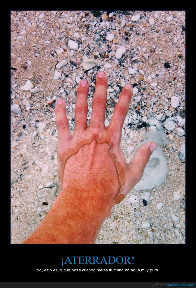 agua,limpia,mano,piel,pura,transparente