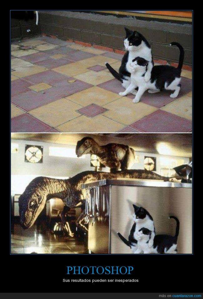 dinosaurios,editar,gato,internet,jurassic parc,photoshop,velociraptor