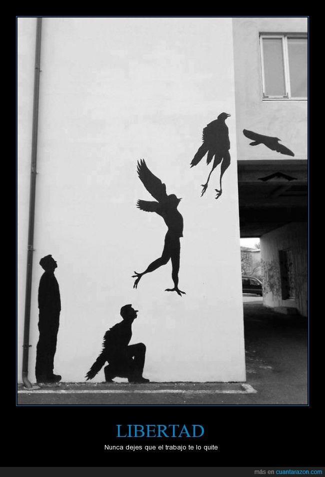 ave,graffiti,Libertad,saltar,trabajo,volar