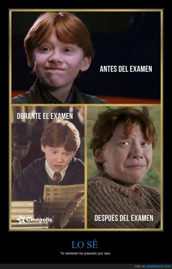 estudiar,examen,mientras,pero no ron de beber,ron,ron de Harry Potter,Toma ya,ver