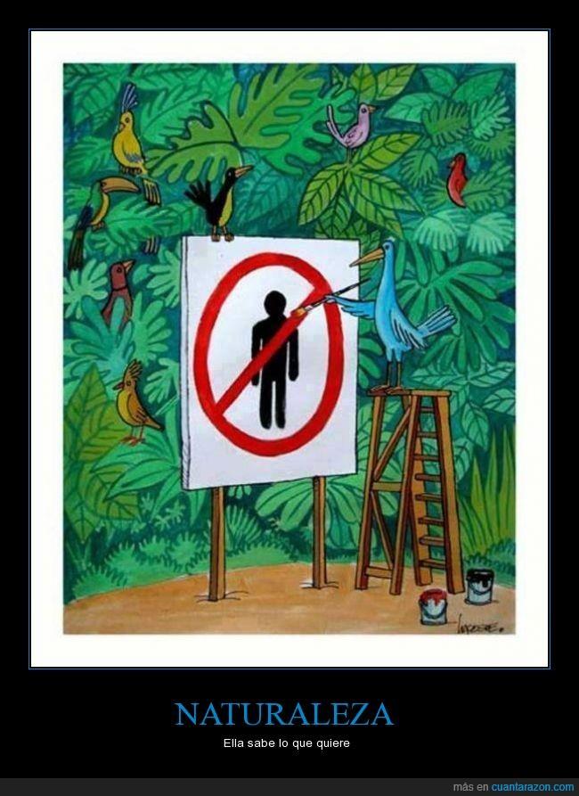 ave,hombre,humano,naturaleza,persona,prohibido,tucan