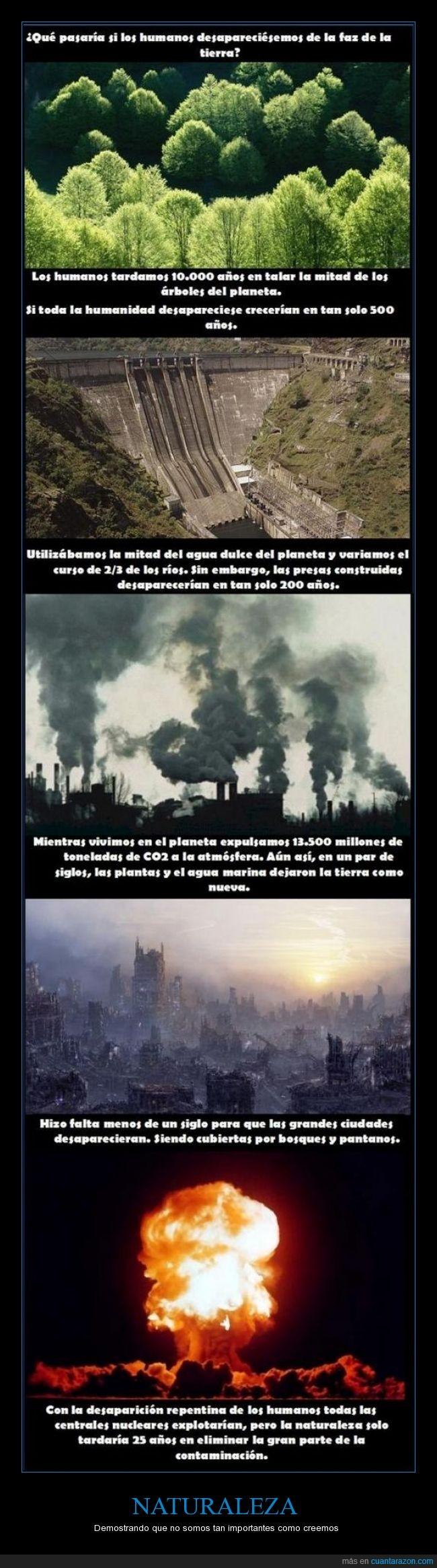 desaparecer,humano,natural,naturaleza,nuclear,reaccion,realidad,vida. animal