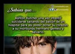 Enlace a Ashton Kutcher es más que una cara bonita