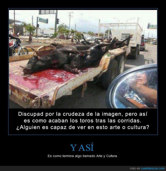 animales,cuerpo,esto tiene que terminar,sangre,tauromaqui,toros