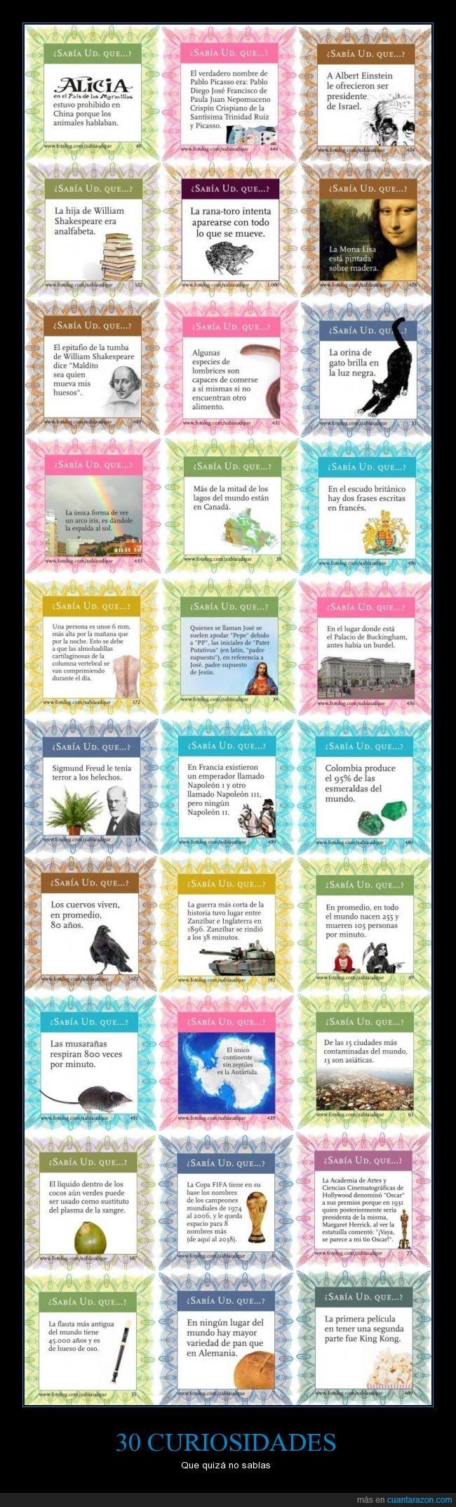cuervo,curiosidad,curiosidades,datos,flauta,freud,interesante,miedo,pan,secuela,shakespeare