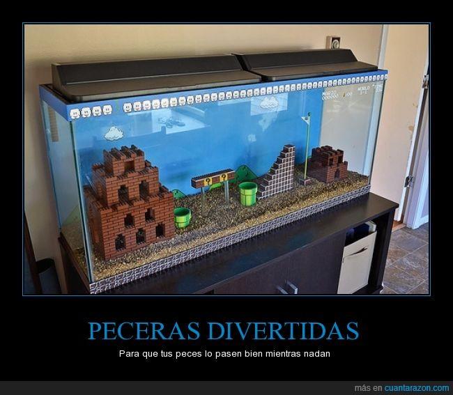 agua,bros,decoracion,gamer,mario,pecera,peces,videojuegos