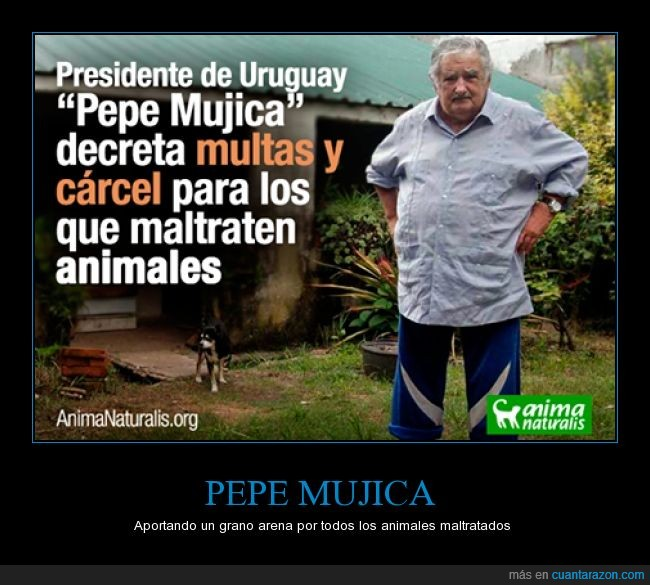 animales,cárcel,multas,Pepe Mujica