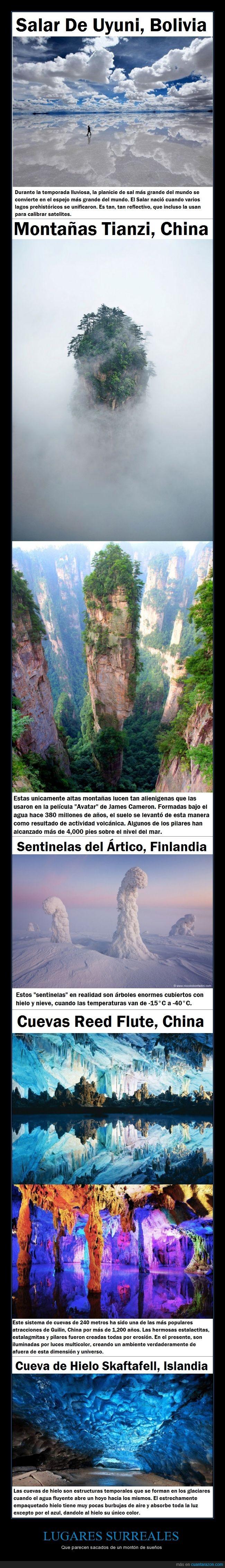 arbol,cuento,cueva,lugares,secreto,sueño,surrealistas,tierra
