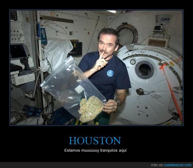 astronauta,bolsa,espacial,espacio,hierba,maria,nave