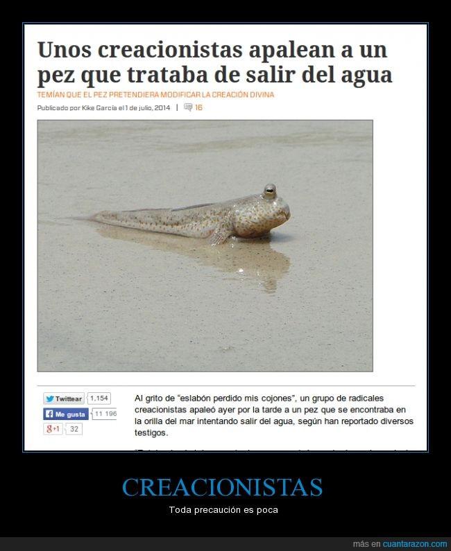 agua,apalear,creacionista,evolucion,fake,falso,pez,salir