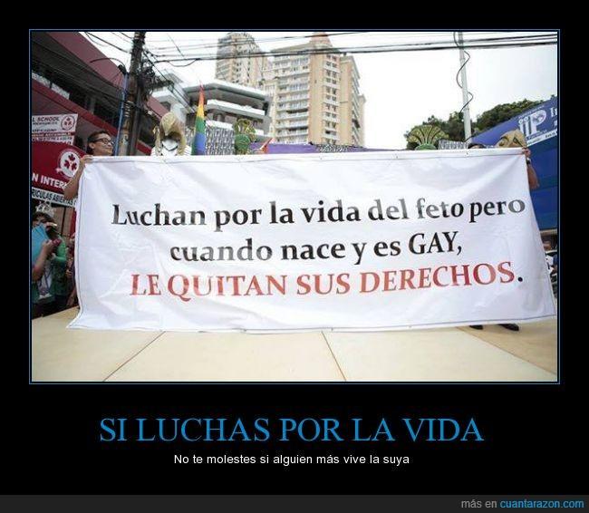 derechos,feto,homo,homofobia,manifestación,nacer,vida