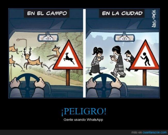 carretera,cruzar,mirar,movil,peligro,persona,smartphone,vicio,visio,whatsapp