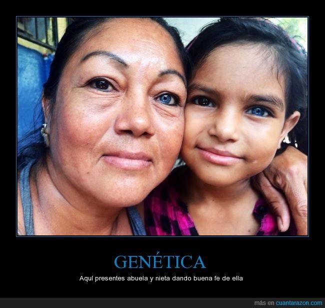 abuela,azul,heterocromia,marron,mujer,nieta,niña,ojos,oscuro