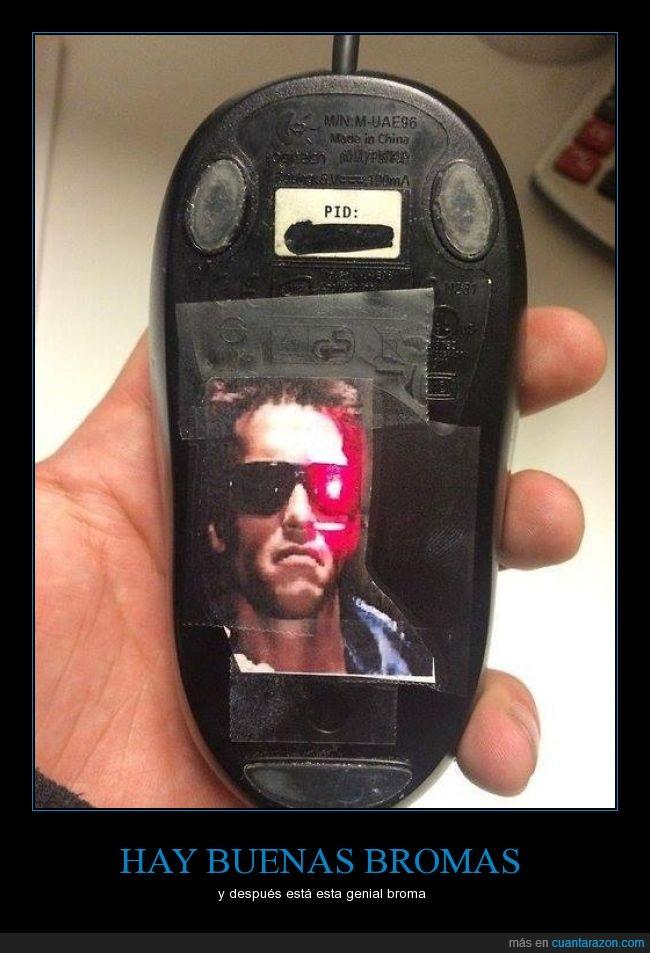 Arnold,broma,laser,luz,mouse,prank,rojo,Terminator,troll,trolleo