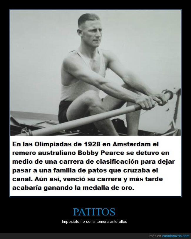 Amsterdam,Bobby Pearce,carrera,medalla,olimpiada,patos,remero,remo