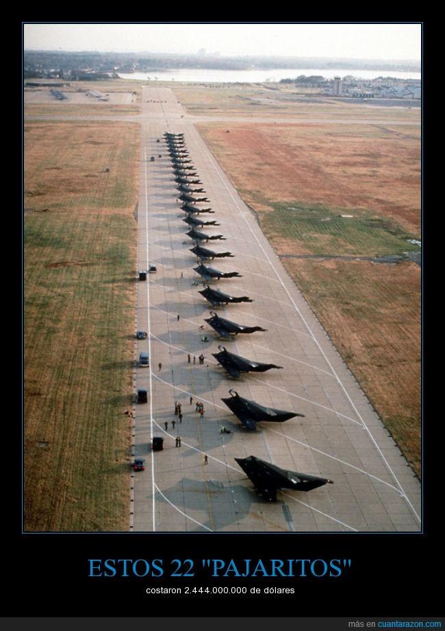 avion,caro,caza,Caza furtivo F-117A Nighthawk,dinero,ejercito,militar,volar