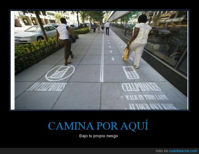 caminar,camino,diferente,lane,movil,separar,zombie