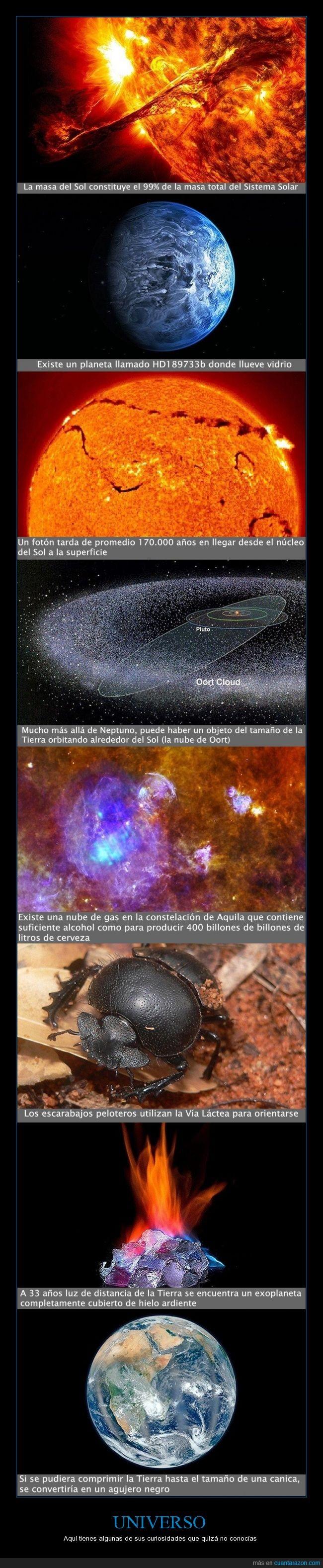 constelación de Aquila,escarabajos peloteros,exoplaneta,fotón,la nube de Oort,maravilloso,Neptuno,planeta HD189733b,Sistema Solar,Sol,universo,Vía Láctea