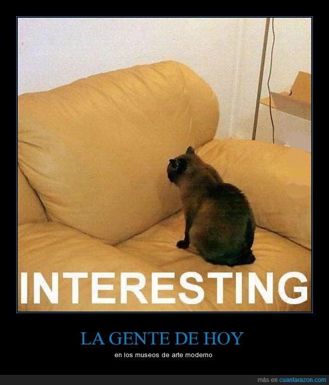 arte. arte moderno,broma,gato,interesante,museos,obras,pinturas,resumen