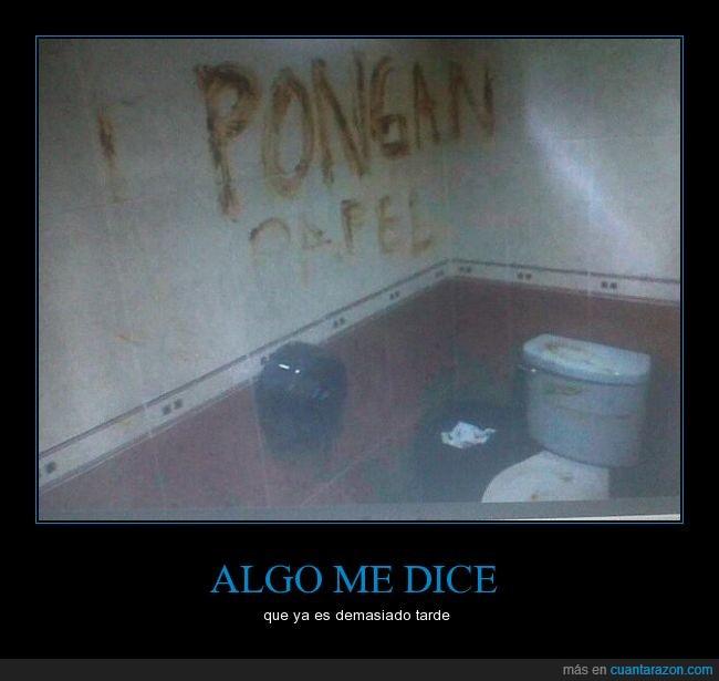 asco,baño,caca,ecuador,papel,paredes,wc