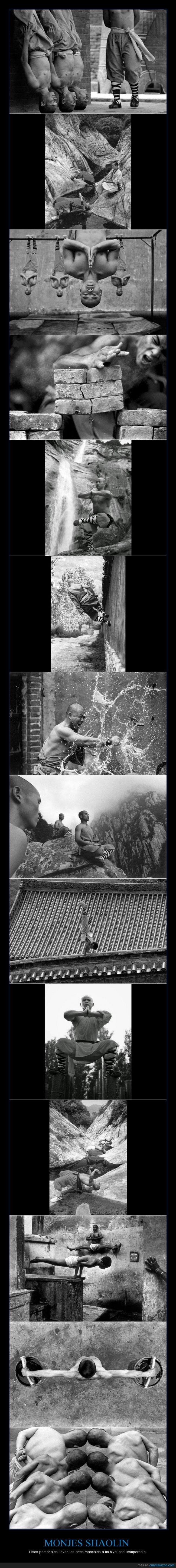 artes marciales,autodefensa,casi insuperable,equilibrio,fuerza,impresionante,monjes shaolin