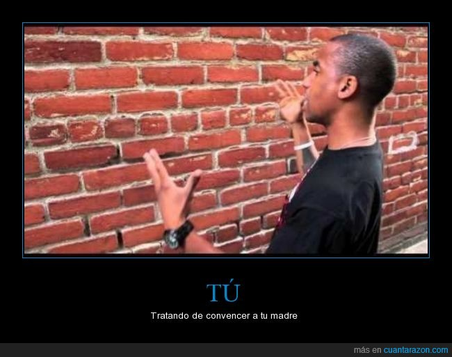 convencer,hijo,ladrillos,madres,pared
