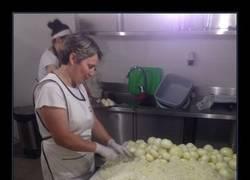 Enlace a Pica que pica cebollas