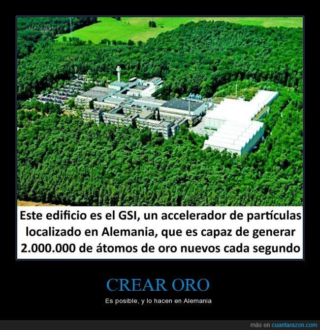 acelerador de partículas,GSI,oro