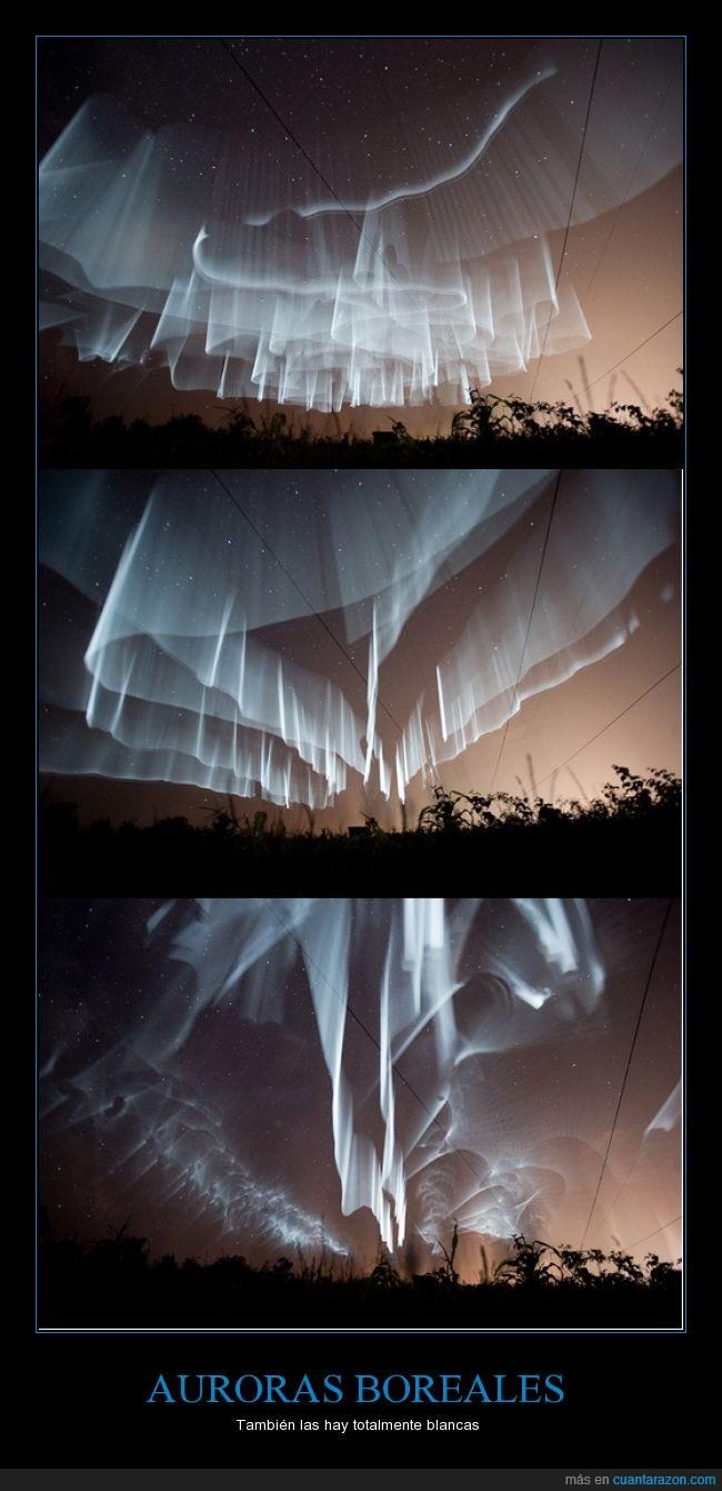 auroras boreales,bello,blancas,finlandia,hermoso