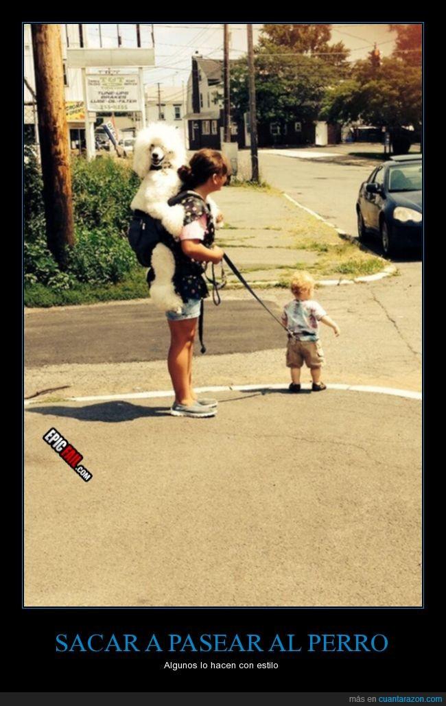 bebé,cinta,correa,hijo,llevar,madre,niño,pasear,perro
