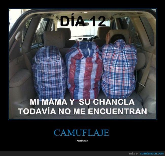 bolsas,camisa,coche,cuadros,desapercibido,esconder,escondite,furgoneta,igual,invisible,maletero