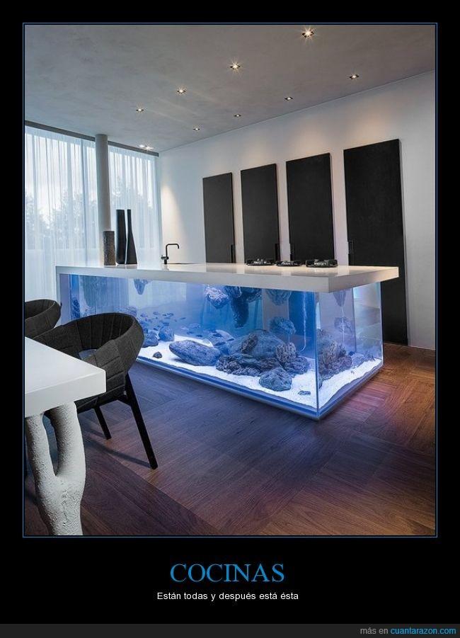 acuario,agua,belleza,cocina,diseño,lujo,mar,pecera,vanguardia