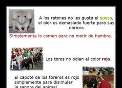 Enlace a MITOS DE ANIMALES