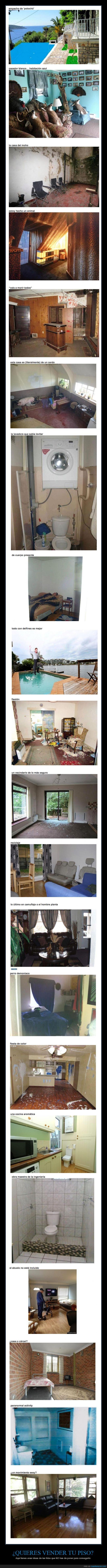 alquilar,casa,casero,cerdo,encontradas,inmobiliaria,miedo,pintura,reales,roto,sucio,vender