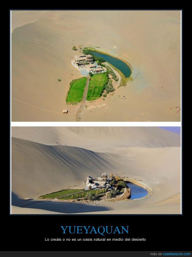 Bear Grills se moriria al verlo,China,Desierto,felicidad,fertil,medio,Oasis,tierra,YUEYAQUAN