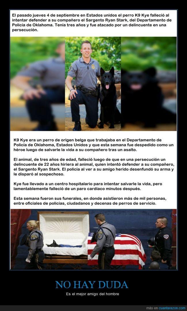 delincuente,funeral,honores,mejor amigo del hombre,perro,policía,respeto por los policías,triste