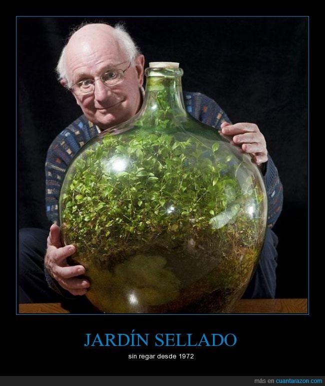 auto sustentable,botella gigante,jardín,sellado