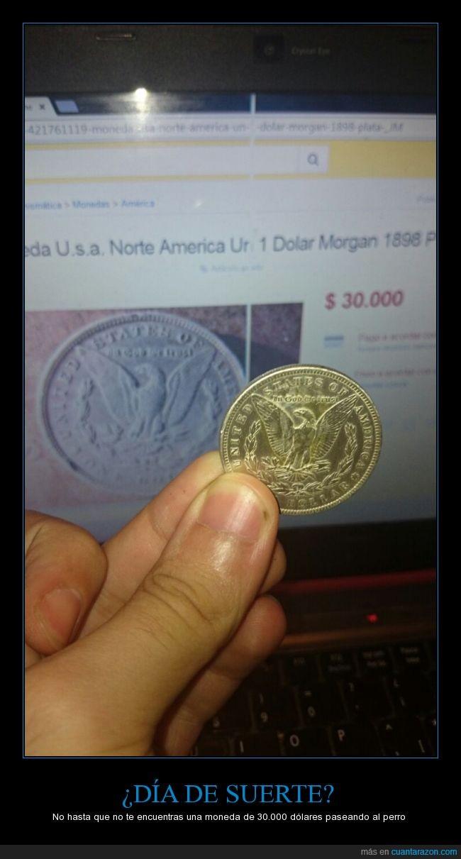 dolar,encontrar,fail,moneda,plata,suerte